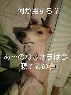 CA390153-0001-0001.JPG
